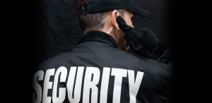Security Services Newcastle